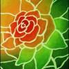 Ruusu3
